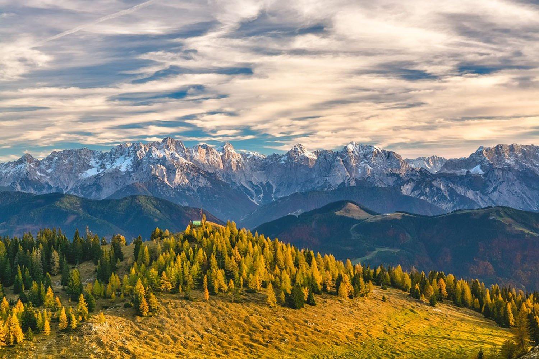 bozeman montana horse riding classes cedar ridge equine
